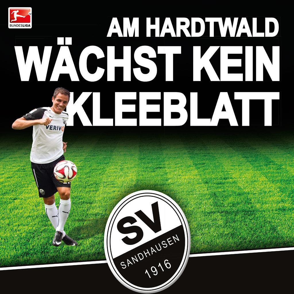 Plakat SV Sandhausen1916 e.V.